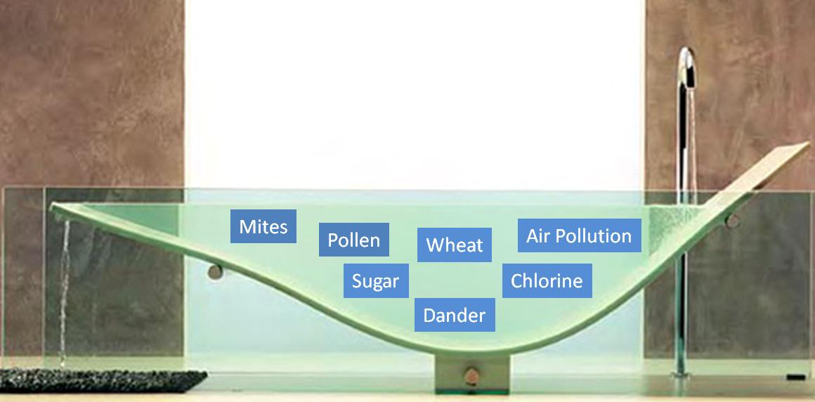 Allergies: The Bathtub Effect