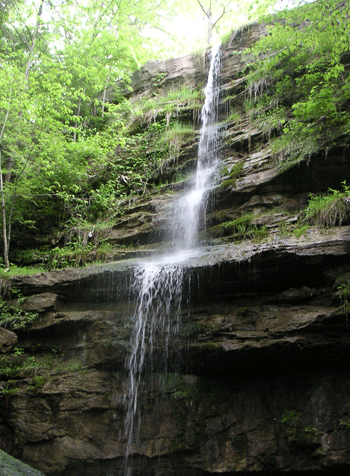 Waterfall McConnells Mill